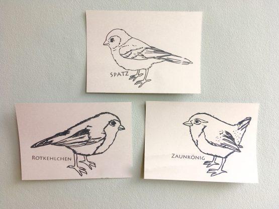 Piepmätze-Postkarten