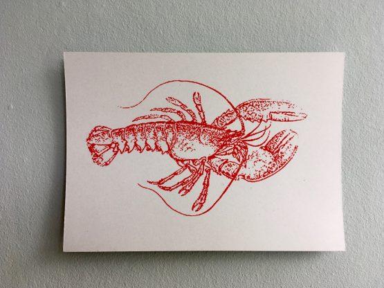Postkarten Meerestiere